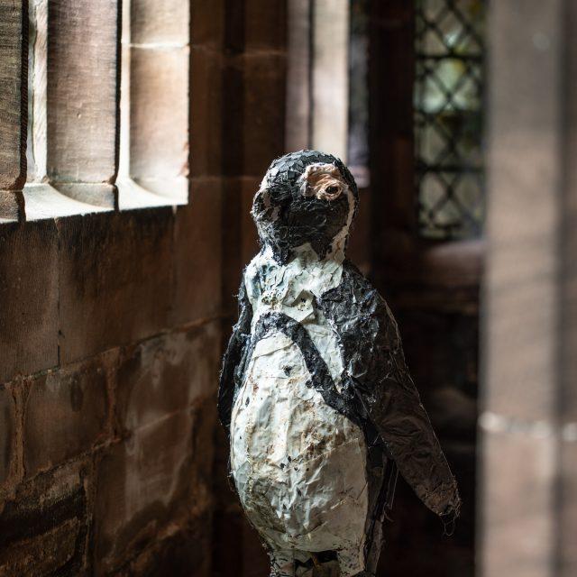African Cape Penguin sculpture made from beach plastics.