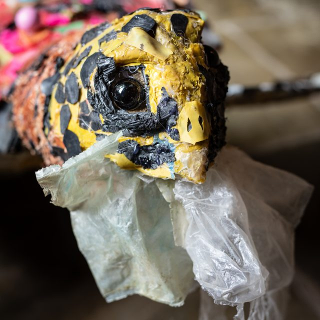 Hawksbill Turtle sculpture (close up of head)