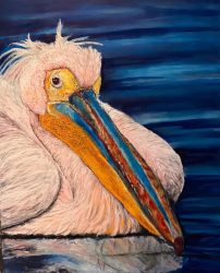 Pelican oil painting by Jacha Potgieter