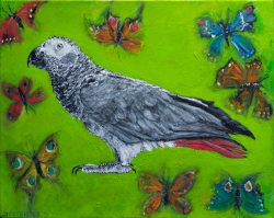 African grey parrot oil painting by Jacha Potgieter